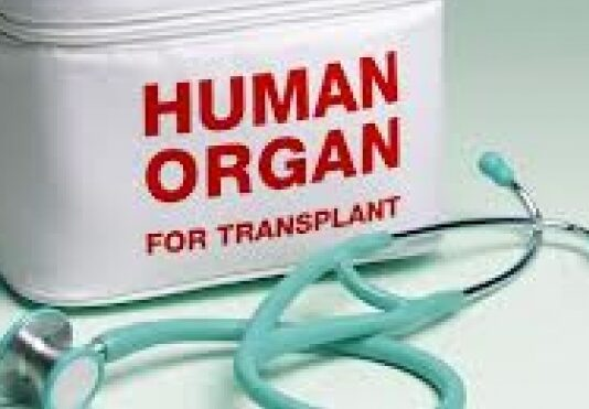 transplantation activity