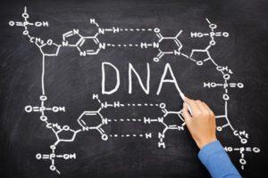 human embryo biological nature