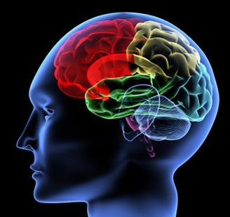 Suicidal specific brain areas