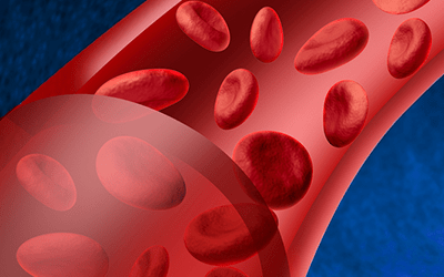 Blood diseases treatment possible improvement. New technique could generate abundant blood cells to be transplanted in a sufficient amount in patients