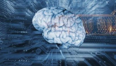 A controversial start-up that wants to upload people's minds on to the cloud with a brain embalming is the first immortality commercial offer