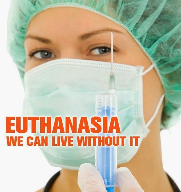 euthanasia bioethical approach