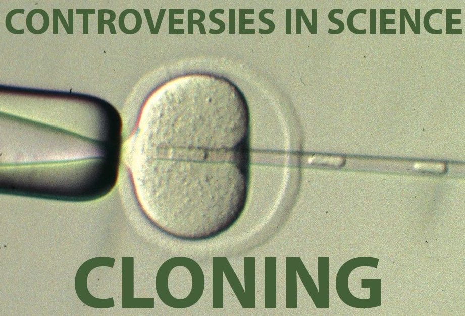Why is human cloning controversy so present in biotechnology and bioethics. Relevant medical uses have been proposed but can the end justify the means?
