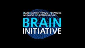 brain experiments rekindlel debate