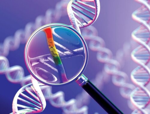 Research study combines latest advances in gene editing with the therapeutic potential of stem cells