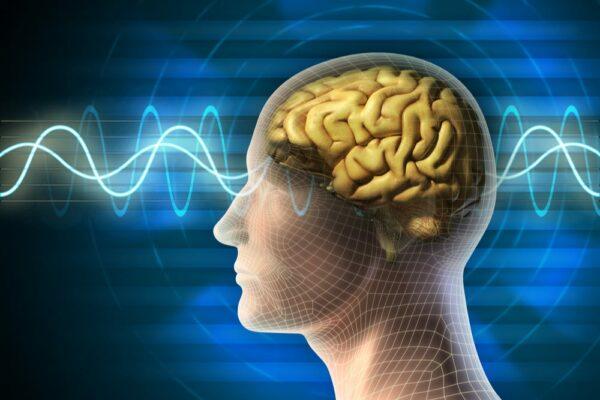 Brain death controversy death by neurologic criteria