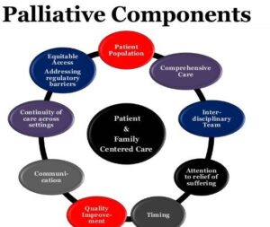 Palliative care in developed countries should improve