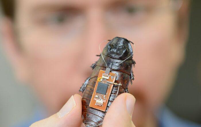 Biobots biological machines