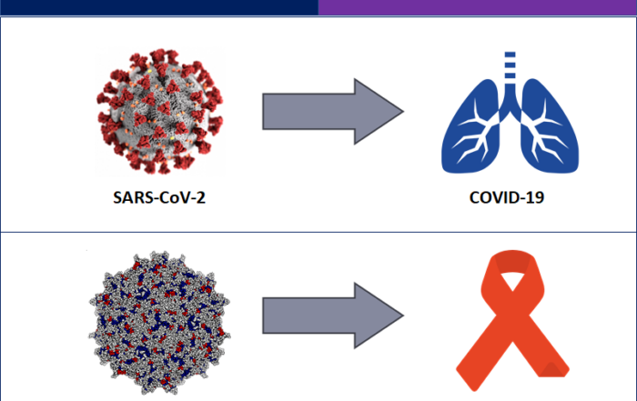 COVID 19 and HIV vaccines