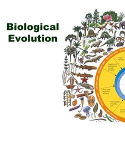 evolution purpose