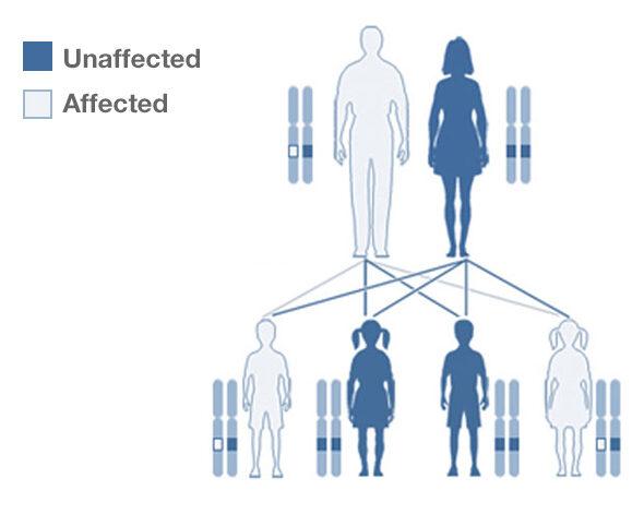 Genome editing reproductive option