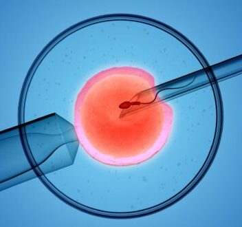 IVF treatments in coronavirus crisis