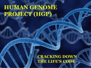 human genome project achievements