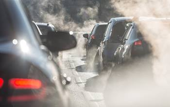 pregnant women exposed to pollution